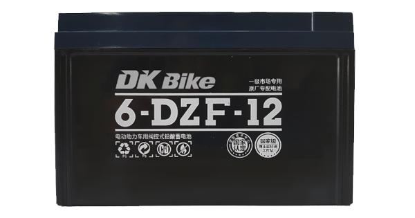 Ắc quy xe máy điện Dkbike 48V12AH
